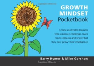 Growth mindset pocket book