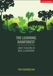 thelearning rainforest.png