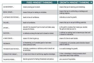 Fixed vs growth 2