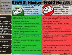 Fixed vs growth